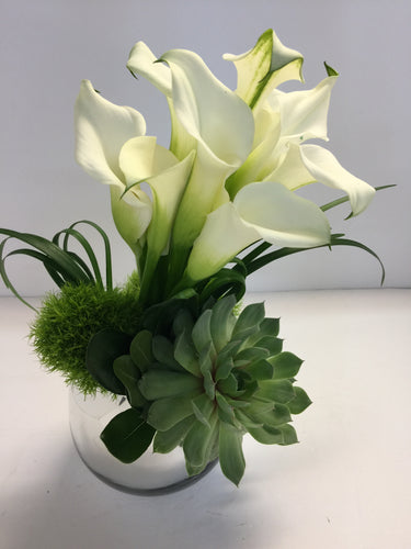C12 - Elegant Callas accented with Succulent - Flowerplustoronto