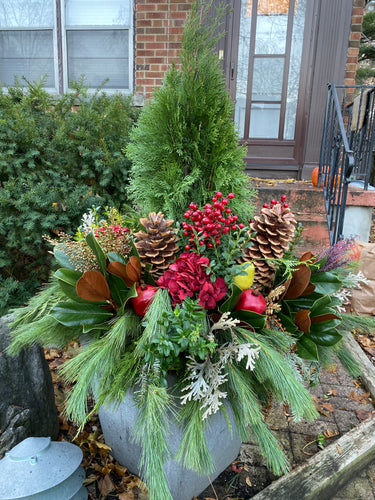 WP19 - Modern Winter Planter - Flowerplustoronto