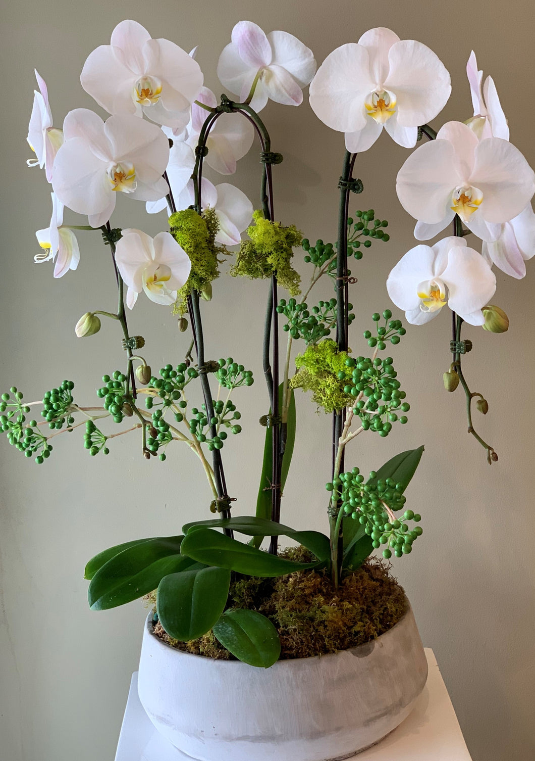 P39- Modern Orchid Arrangement - Flowerplustoronto