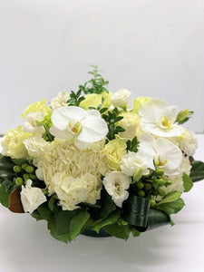 F146- Elegant White and Green Round Centerpiece - Flowerplustoronto