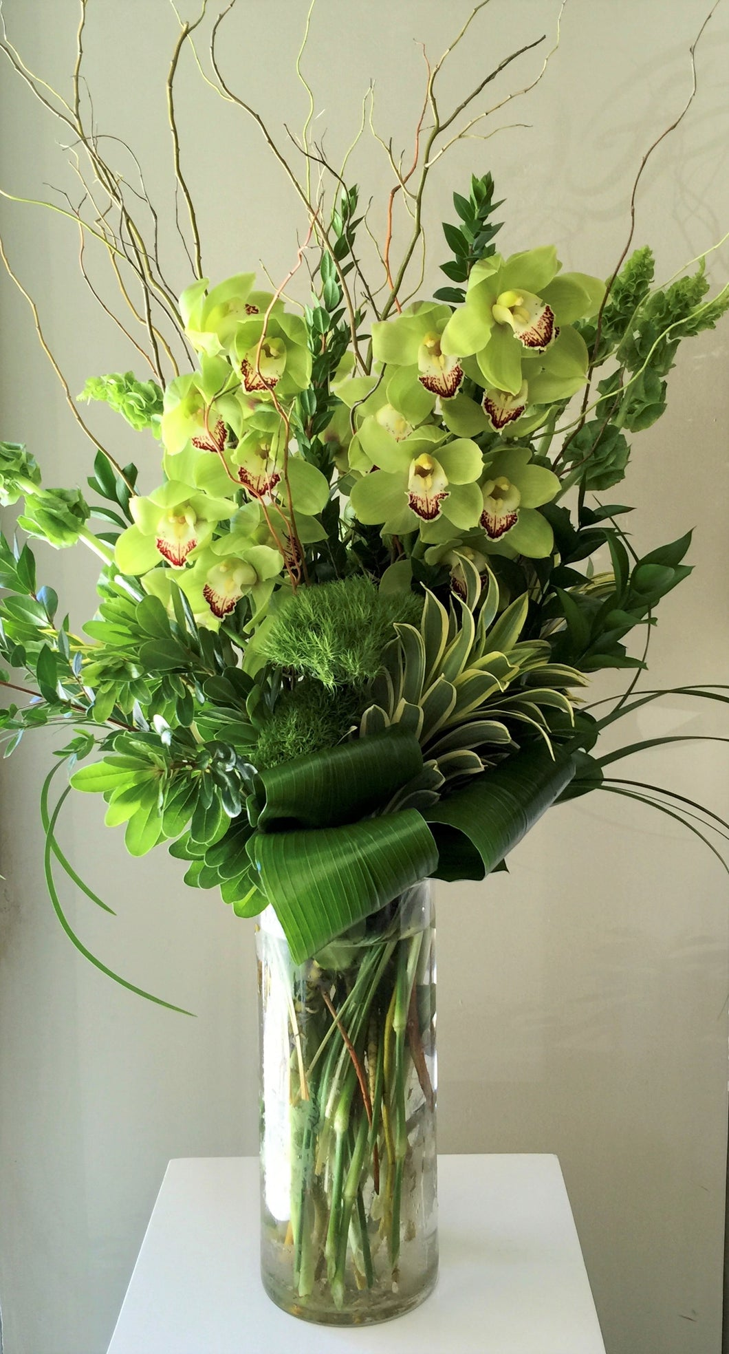C20 - Elegant Chartreuse Cymbidium Orchids (need 1 week notice) - Flowerplustoronto