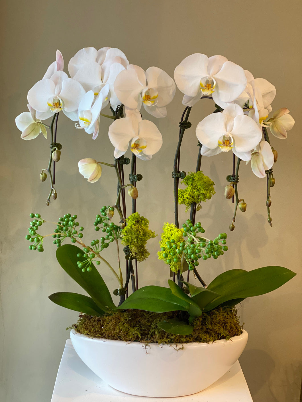P11 - Modern White Orchid Arrangement - Flowerplustoronto
