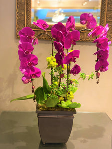 P31 - Elegant Purple Orchid Arrangement - Flowerplustoronto