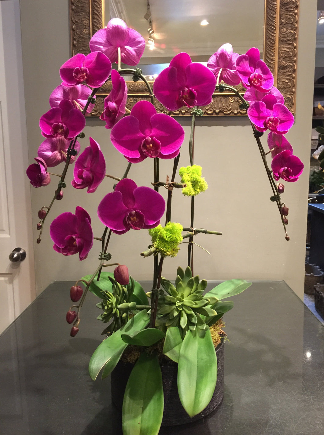 P3 - Luxurious Orchid Arrangement - Flowerplustoronto
