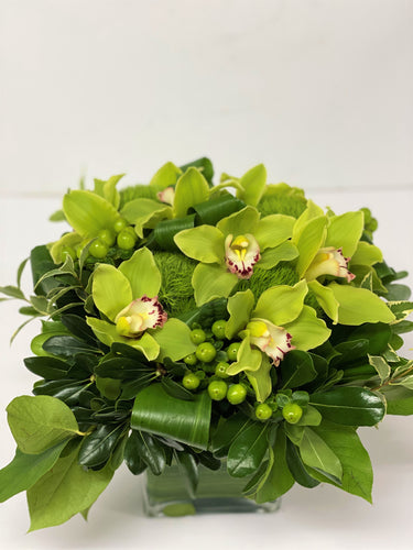 C14 - Modern Cymbidium Arrangement - Flowerplustoronto
