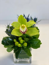 Load image into Gallery viewer, F2 - Cymbidium Arrangement - Flowerplustoronto