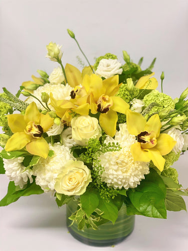 C15 - Modern Yellow Cymbidium Arrangement - Flowerplustoronto