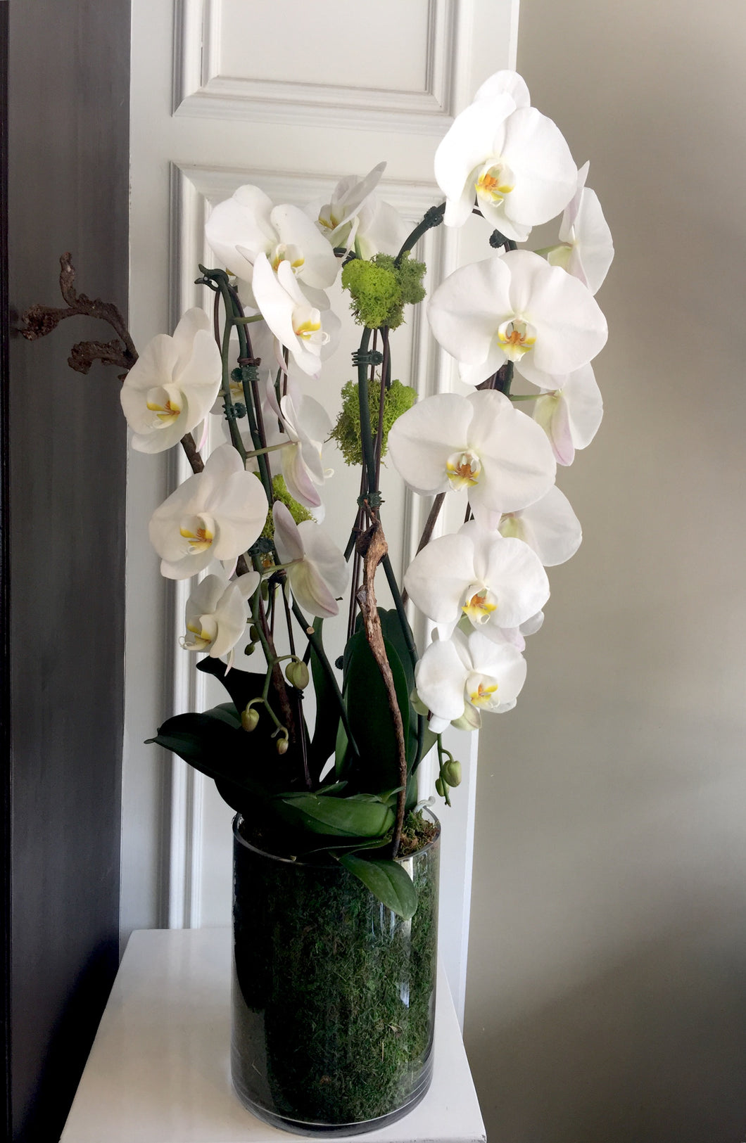 P27 - Elegant White Orchid Arrangement - Flowerplustoronto