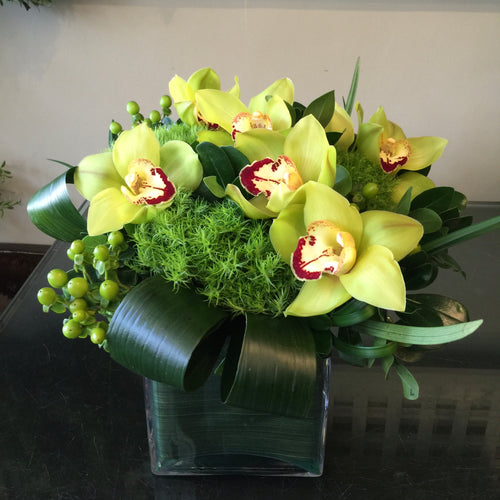 F20 - Green Cymbidium Arrangement - Flowerplustoronto