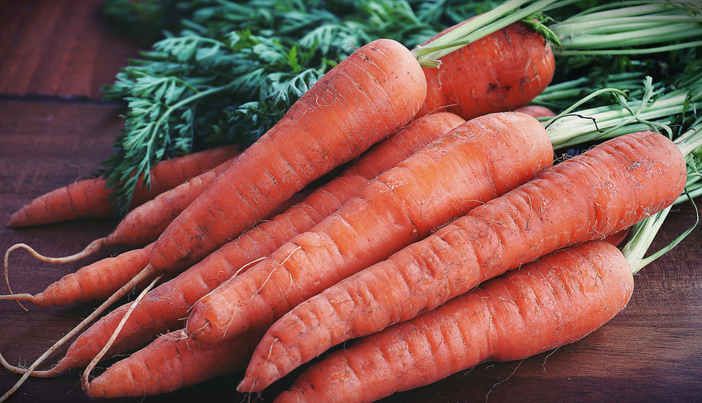 CAROTENOIDS - THE REASON YOU SHOULD INDULGE IN CARROTS