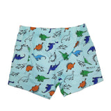 Baby Essentials Boys Dinosaur T-Shirt and Shorts 2-Piece Set
