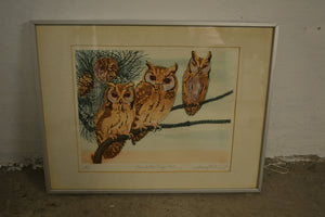 David Koster (Original Work) 'Barefooted Scops Owls',  Framed - 180121-08