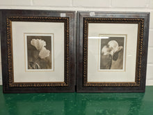 Load image into Gallery viewer, Sondra Wampler Sepia Pair, 'Lily In Rose' & 'Bending Tulip', Both Framed - 181837/181838