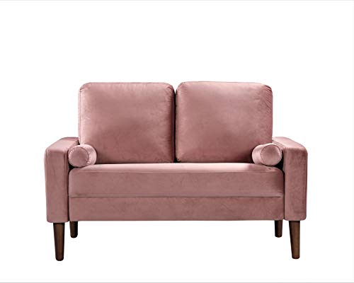 Container Furniture Direct S5526-L Petra Mid Century Modern Velvet Upholstered Loveseat, 51.57