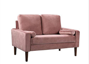 "Container Furniture Direct S5526-L Petra Mid Century Modern Velvet Upholstered Loveseat, 51.57"", Rose"