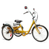 "Image of Belize Tri-Rider Elek-Trike 24"" 24V/20Ah 450W  Transportation Electric Trike 98183"