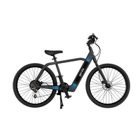 GenZe 36V/9.6Ah 350W Cruiser Electric Bike E201