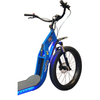 Image of Glide Cruisers Raptor 48V 1000 Watt Fat tire Electric Scooter F1