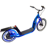 Image of Glide Cruisers Rover 48V 1000 Watt Hybrid Electric Kick Scooter SR1