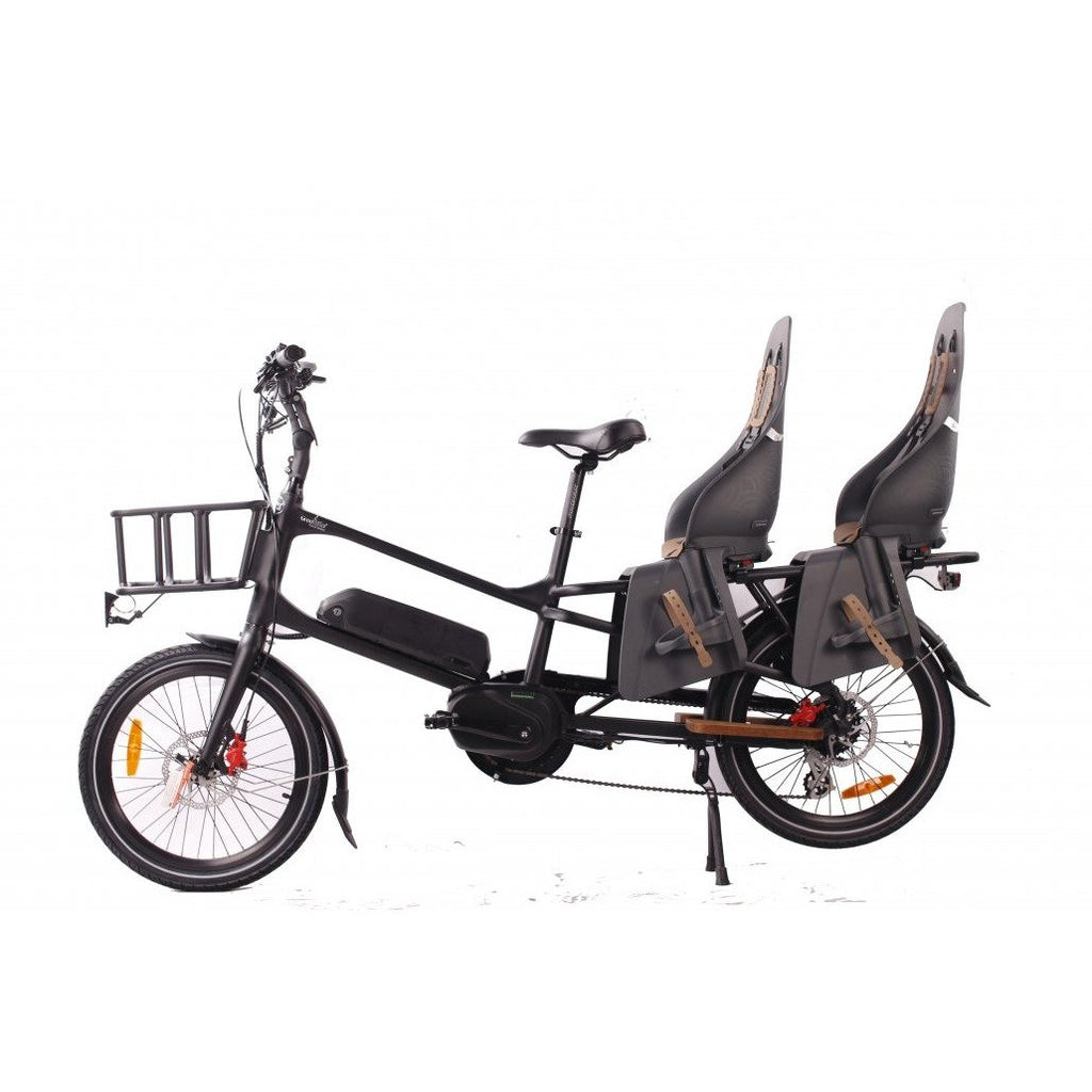 Green Bike Electric Motion Cargo Bike 48V 500W Electric City Bike