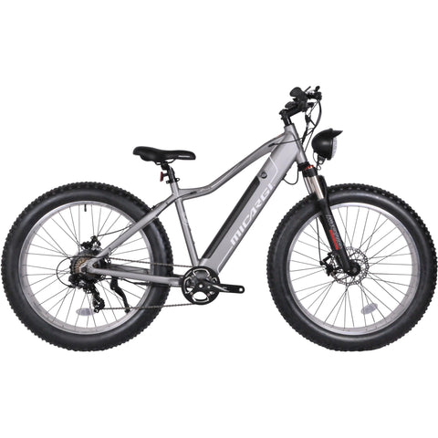 Micargi Steed MTB Fat Tire 800 Watts Electric Bike EB-STEED