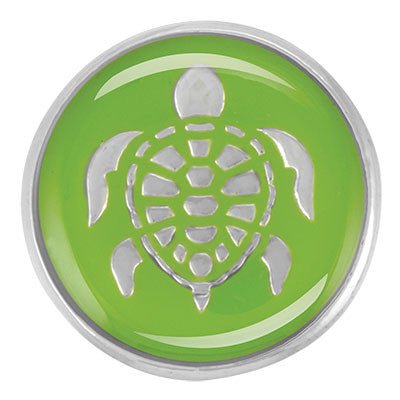 Enamel Green Turtle Ginger Snap