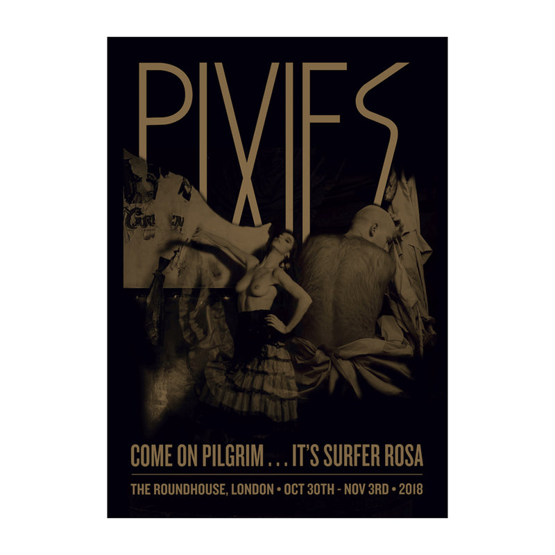 Come on Pilgrim Surfer Rosa Poster