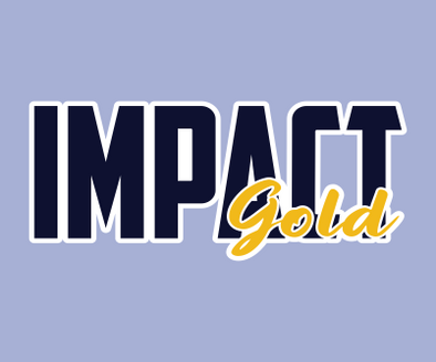 Impact Gold BLOCK (NAVY) Logo Decals