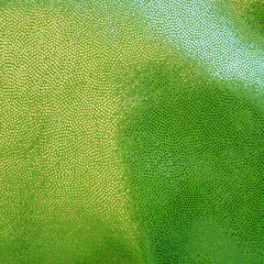 Foil Dotted Spandex 15 Yard Minimum Lime - NY Fashion Center Fabrics