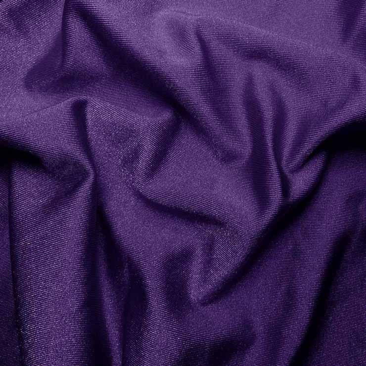 Solid Shiny Spandex Purple
