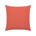 "20"" x 20"" Canvas Melon pillow by Elaine Smith 
