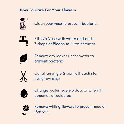 Hoe to care for flowers