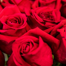 Load image into Gallery viewer, Market Style - Roses