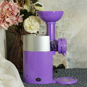 Healthy Ice Cream Maker