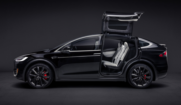 Wing Window Kit to Protect Tesla Model X