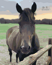 Load image into Gallery viewer, Hold your Horses- Paint by Number Kit