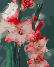 Load image into Gallery viewer, Glad for Gladiolus- Paint by Number Kit