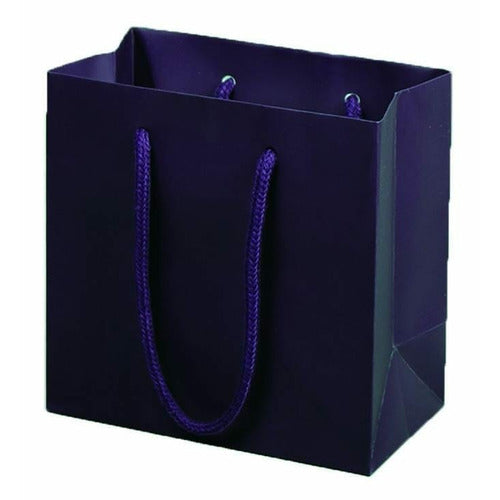Aubergine Matte Rope Handle Euro-Tote Shopping Bags - 6.5 x 3.5 x 6.5 - Plastic Bag Partners-Retail Bags - Euro-Tote