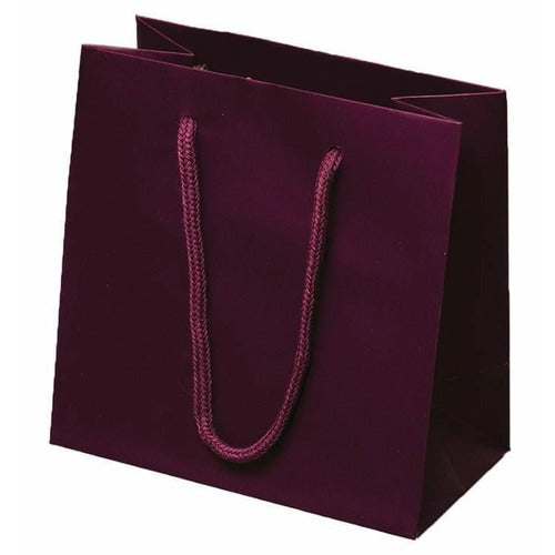Burgundy Matte Rope Handle Euro-Tote Shopping Bags - 6.5 x 3.5 x 6.5 - Plastic Bag Partners-Retail Bags - Euro-Tote