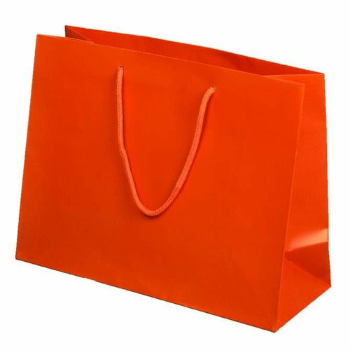 Valencia Matte Rope Handle Euro-Tote Shopping Bags - 13.0 x 5.0 x 10.0 - Plastic Bag Partners-Retail Bags - Euro-Tote