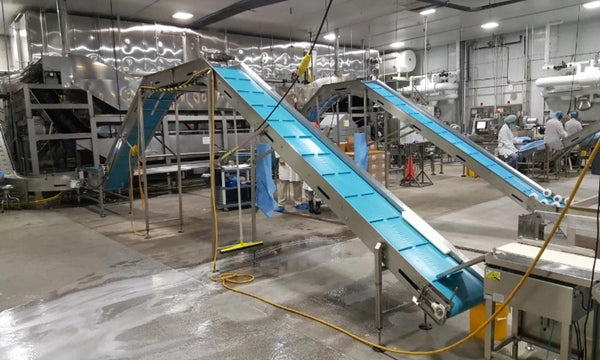 331882 - COASTLINE PRODUCT CONVEYOR - Intech Enterprises