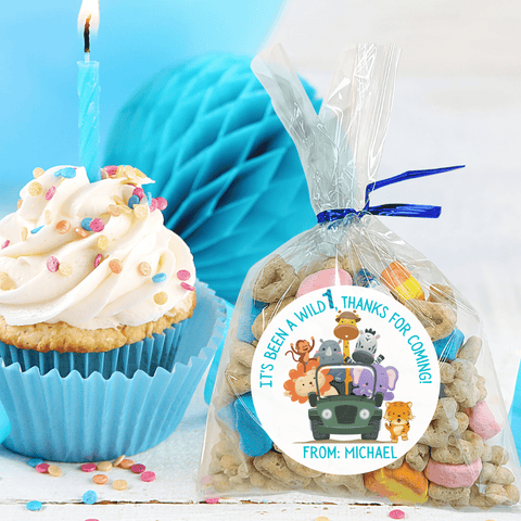 NEW! Personalized Boys Birthday Party Stickers & Treat Bags