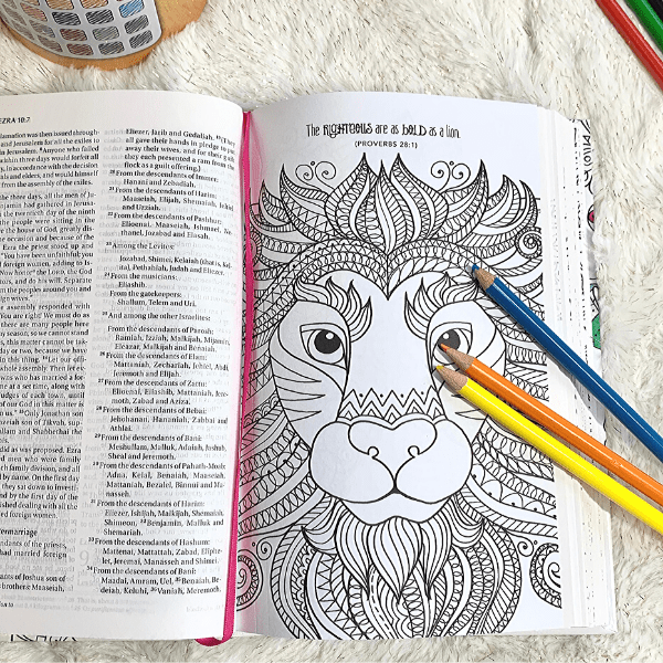 Wonders Of Creation NIV Coloring Holy Bible & FREE Gift