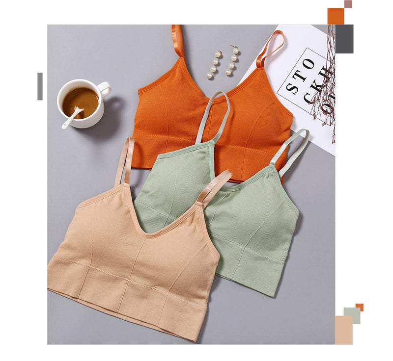 Active Solid Crop Top Padded Bralette - Jance Samantha Beauty & Fashion
