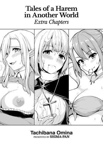 Tales of a Harem in Another World - Extra Chapters