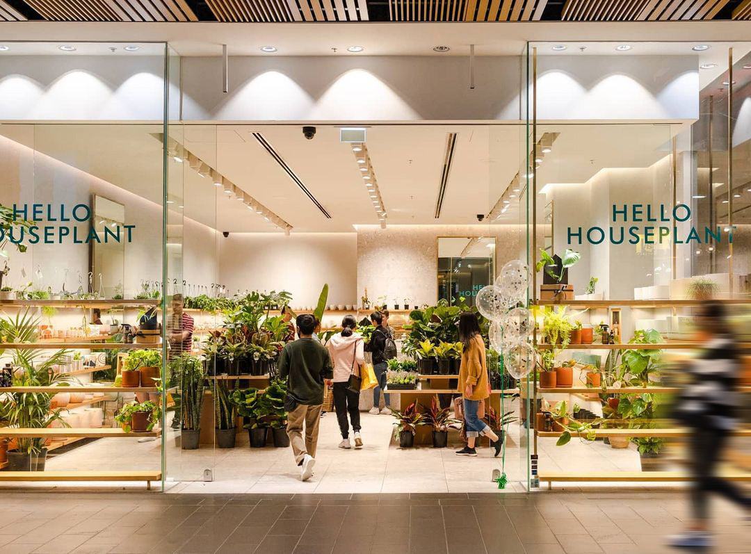 Hello Houseplant Melbourne Opening Day