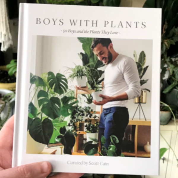 Boys With Plants curated by Scott Cain