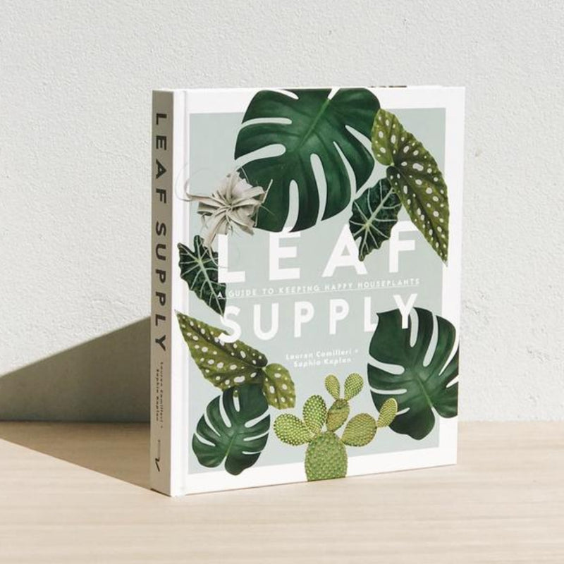 Leaf Supply by Lauren Camilleri & Sophia Kaplan