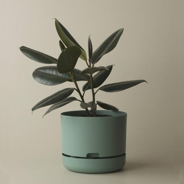 Self Watering Plant Pot - 250mm Cabinet Green