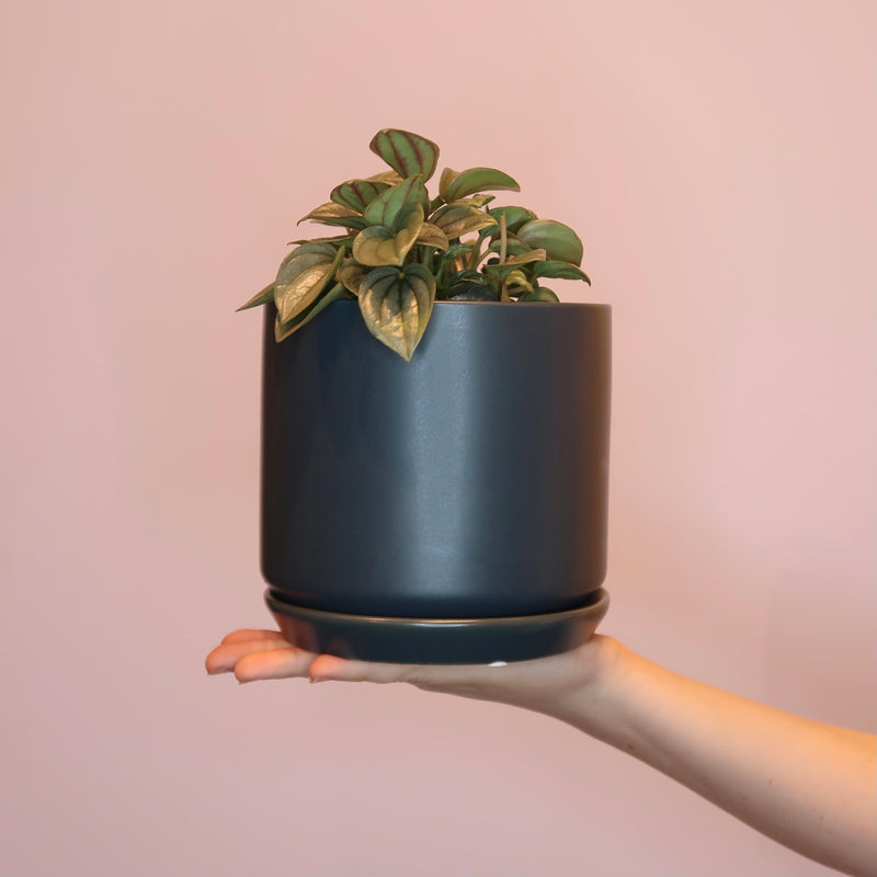 Oslo Planter - Dark Blue (S)